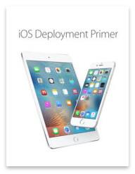 iOS Deployment Primer