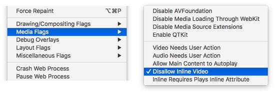 Automatische Video-Wiedergabe in Safari verhindern